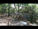 Затерянный мир - парк динозавров в Евпатории