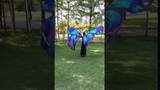 Dancewear Belly dance Props Cape Cloak Dance Fairy Wings Butterfly Isis With Sticks Performance