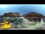 360, Рафтинг на реке Замбези, Замбия-Зимбабве. 4К видео с воздуха