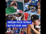 Эмоции болельщиков после первых матчей плей-офф