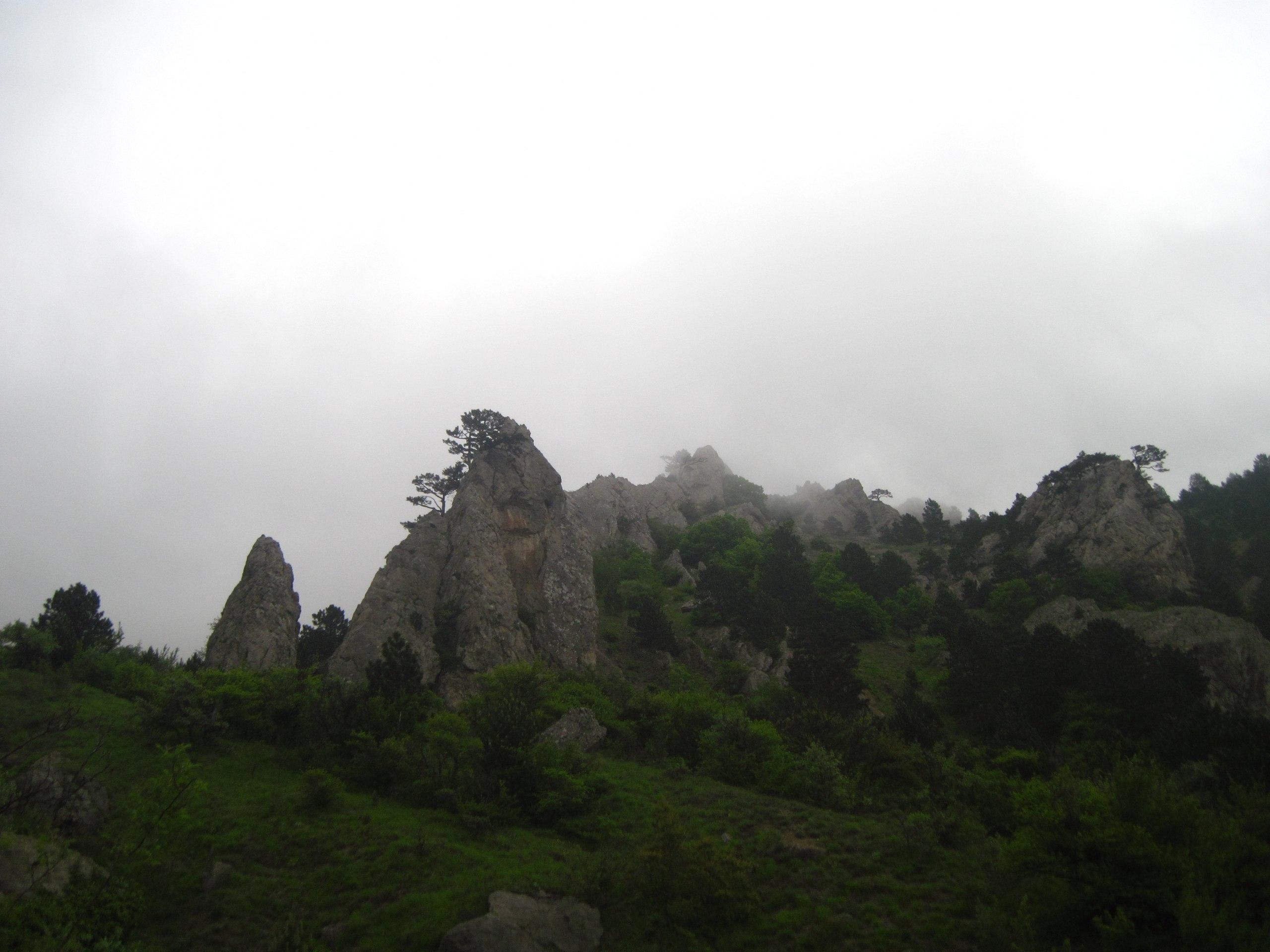 Чигинитра фото