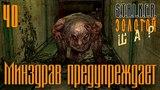 S.T.A.L.K.E.R. Shadow of Chernobyl - Золотой Шар - Завершение #40 ~ Минздрав предупреждает