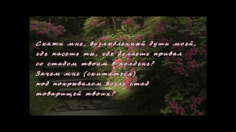 Песнь Песней царя Соломона. Shir aShirim .
