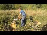 Как это было.   Члены Ротари Клуба Тольятти Меркурий помогают тольяттинскому лесу расти и восстанавливаться.  Старые стволы дере