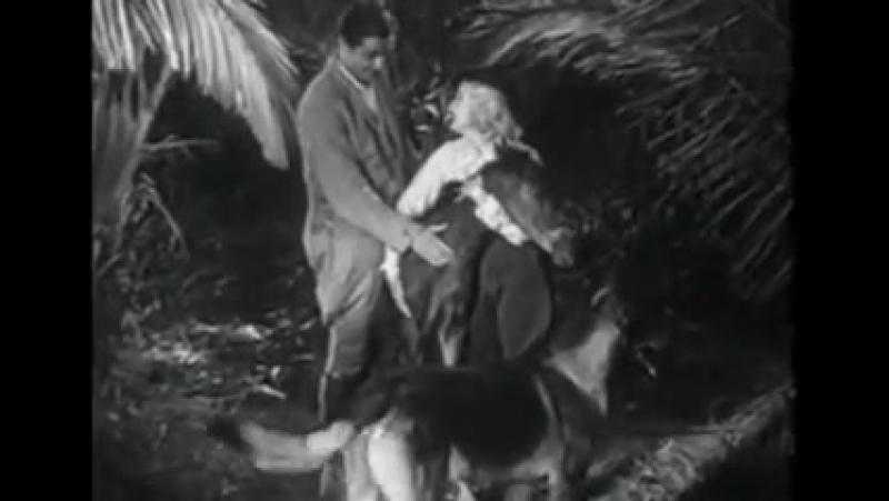 Т С Приключения Рекса и Ринти Primitive Justice 12 серия 1935г
