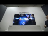 LG Display 65-inch rollable OLED TV hands-on
