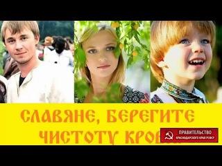 ПравоВедъ Сибирь КОНсультируетъ 77 17 11 17 Судью под УК статью  Загоняем крысу