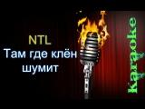 NTL - Там где клен шумит ( караоке )