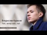 Владислав Курасов Vlad Kurasov Пой, ветер мой, пой (Елена Терлеева cover).