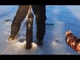 ЩУКА МОНСТР НА ЖЕРЛИЦЫ РЫБАЛКА НА ЩУКУ ЗИМОЙ 2017 2018 Зимняя рыбалка на щуку на балансир на жерлицы первый лёд со льда Балансир жерлицы ЗИМНЯЯ РЫБАЛКА ПО ПЕРВОМУ ЛЬДУ НА ОКУНЯ И ЩУКУ 2017 Зимняя Рыбалка сегодня в декабре Рыбаки не могут вытащить Огромную