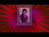 Поёт Мануэль - Забыть тебя Когда улетают журавли Хочу вернуться назад Почему ты уходишь (1969)