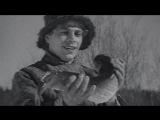 По щучьему веленью (1938) BDRip 720p [vk.com/Feokino]