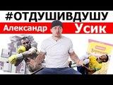 Александр Усик про Гассиева, миллион евро, драку с неизвестными и авторское право