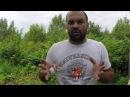 Инструкция разведения и выращивания дождевых червей в домашних условиях. Ящичный метод.