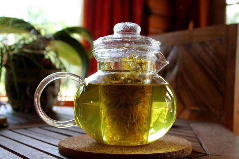 Чай от остеохондроза