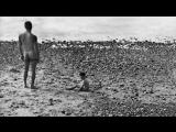 Улисс / ULYSSE (1982) Аньес Варда / Agnès Varda  (субтитры) (короткометражный док. фильм)