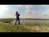 CATCH AND COOK Fly fishing with eel, Catching And Cooking Fish On The field
