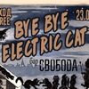 BYE BYE ELECTRIC CAT