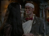 The.New.Addams.Family.s01e28.-.Crisis.in.the.Addams.Famil