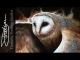 Flying Barn Owl Timelapse Painting by Danielle Trudeau