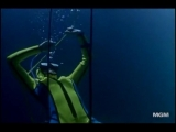 Flipper - drowning