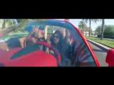 Зулайхо - Бай-бай OFFICIAL VIDEO HD_low.mp4