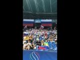 Болельщики сборной России // Чемпионат Мира 2017, Пезаро