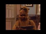 Alf Quote Season 2  Episode 1_Склинбол и картина