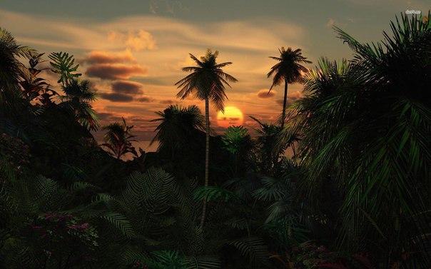 Он жил в деревянном домике не на берегу озера,как все мечтают,а в глубине джунглей, где тебя окружает стена из зелени, в которой затаились разные райские птицы. А называю я их так, потому что звуки, что они издают, просто неповторимы, слаще нашего соловья