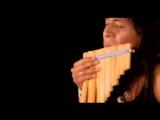 Лео Рохас -  Celeste  - весёлая позитивная мелодия!