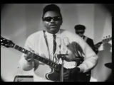 Otis Rush I`Cant Quit You Baby