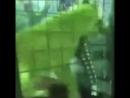 Детей ради забавы заперли в клетке со львицей в зоопарке