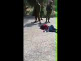 """""""Страдай!"""", """"Сдохни!"""" – орали евреи на 15-летнюю девочку, прошитую пулями – Видео"""