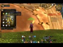Wow 19 lvl twink healer priest build