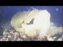 Von wegen gesunder Fisch - 114 000 Tonnen Atommüll vor Europa ins Meer gekippt