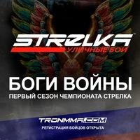 Логотип STRELKA Уличные Бои без правил (Закрытая группа)