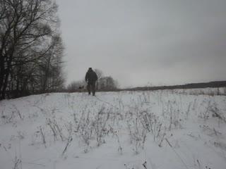 Следовая работа зимой . Ролики для любопытных людей .
