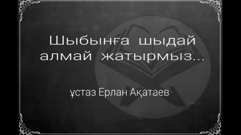 Шыбынға шыдай алмай жатырмыз Ерлан Ақатаев ұстаз