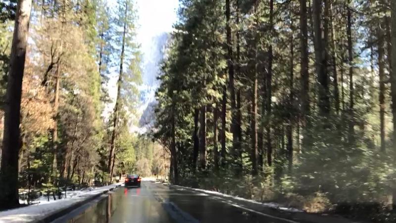 Yosemiti road trip 2