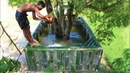 Wild Man Biggest Building Swimming Pool On Tree In Forest