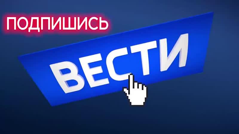 Москвичка читала детям книжку за рулем автомобиля - Россия 24