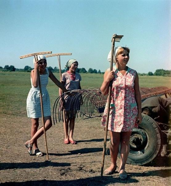 Девчонки на сенокосе, Рязанская область, Какой год, как думаете