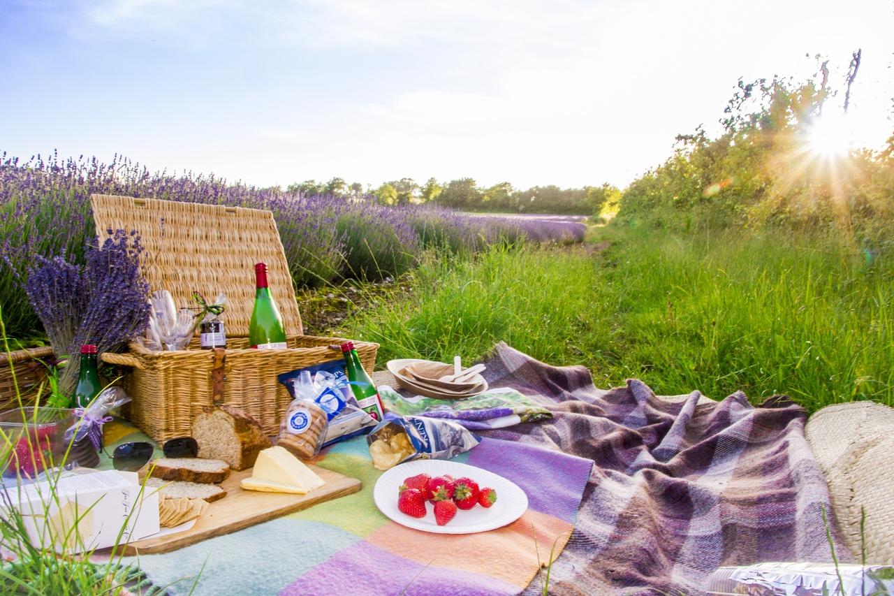 картинки пикник на траве планку тросика снимая