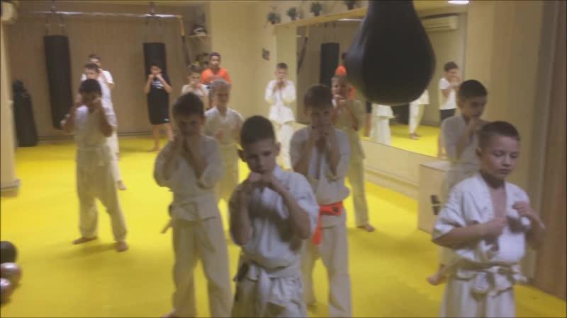 Ежедневная возня тренировка по нокдаун каратэ