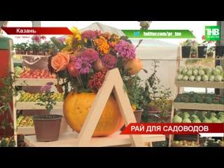 """Садоводы отмечают праздник: овощные ассорти, фруктовые букеты прямо с """"грядки"""""""