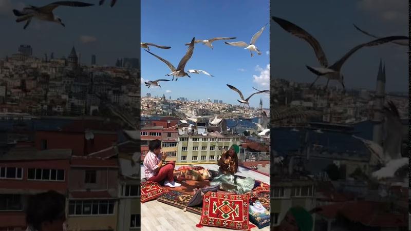 Istanbul ❤️ Как найти крышу Kubbe