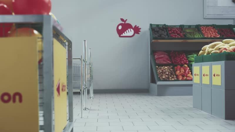 Netto Katzen - Cat Market