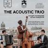 The Acoustic Trio | Александринка | 22 августа