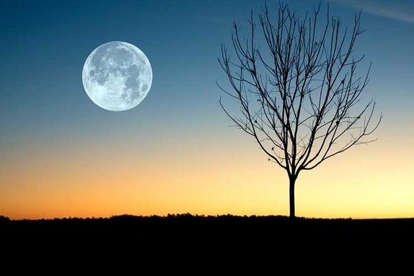 Лунный календарь на октябрь 2019г