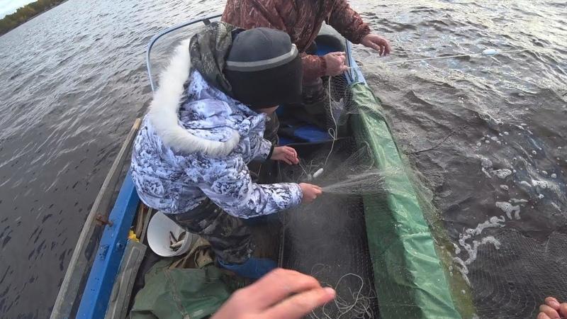 с сэном на промысловой рыбалке сетями